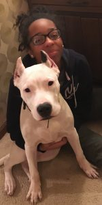 Dogo Argentino Dog with his owner