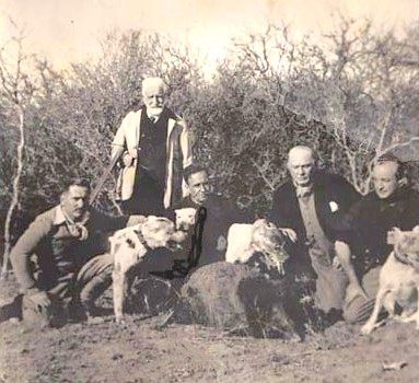Old hunting photo with dogs