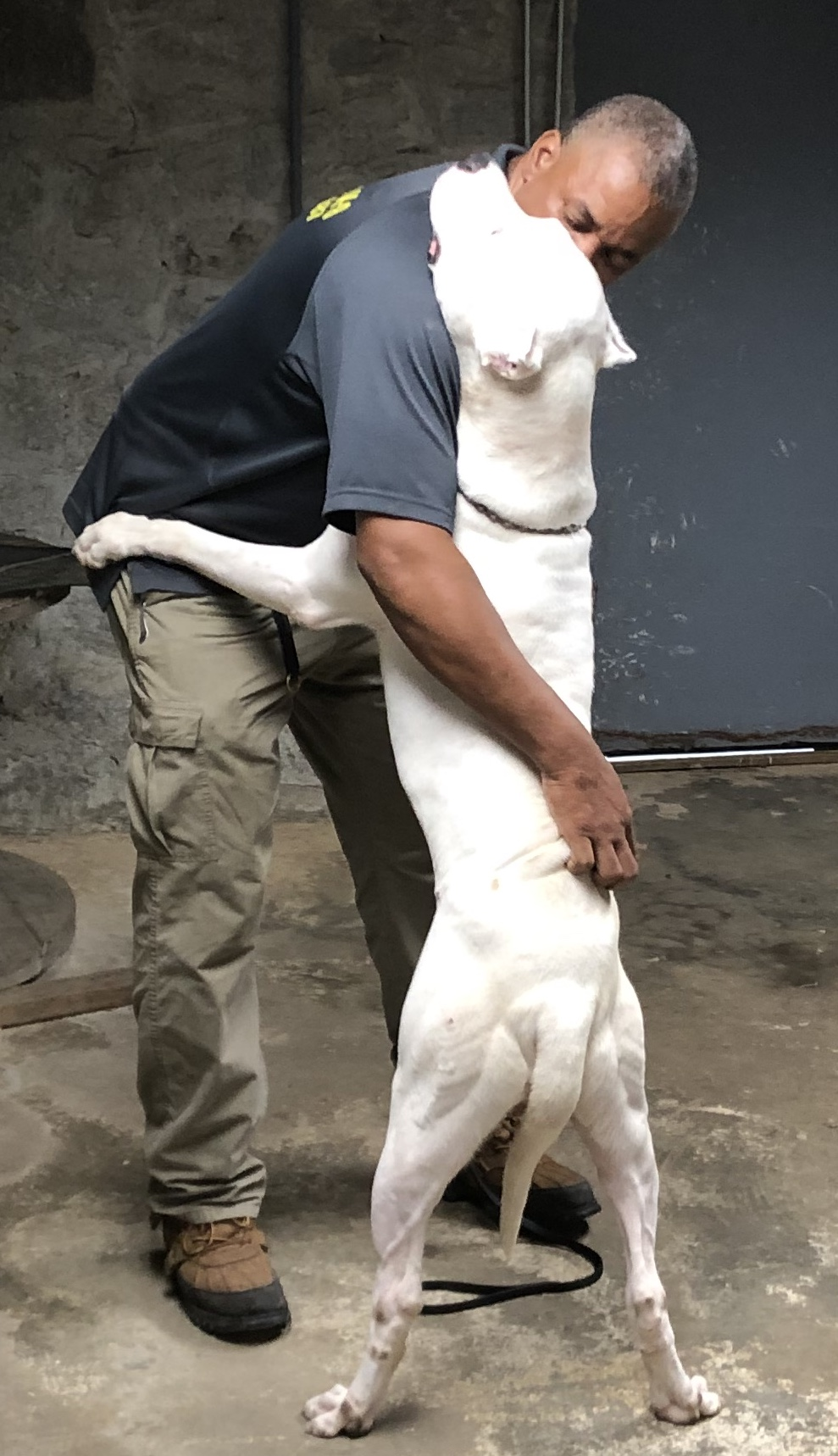 Man hugging white dog
