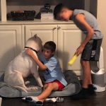 2 boys playing with their dog
