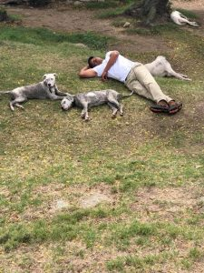 Man lying with dogs
